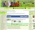 www.domowe-tygrysy.info